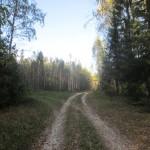 Дорога на Хомутово