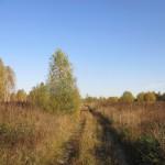 Дорога в Ульянково