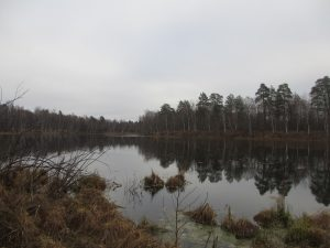 озеро Разгоньево