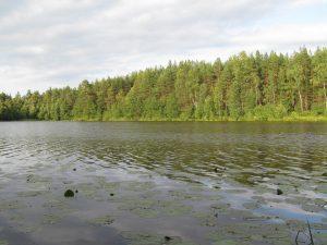 озеро Рассохи