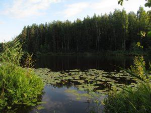 озеро Бельское