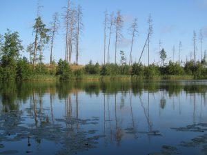 озеро Кщара