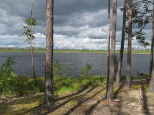 озеро Моховатое